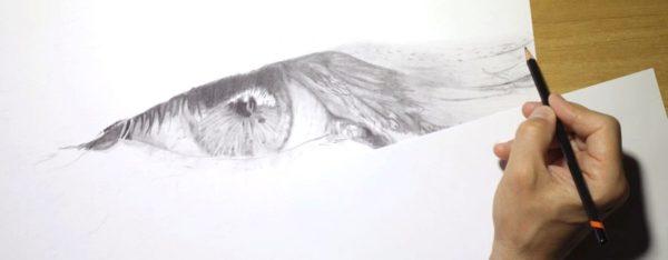 Occhi negli occhi